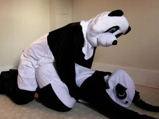 we tried pornhubs pandas